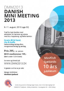 DANISH MINI MEETING 2013 (DMM2013 )